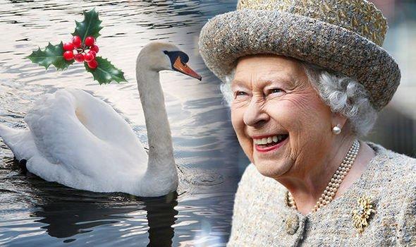 Королева Елизавета II на Рождество заказала блюдо из лебедя – СМИ