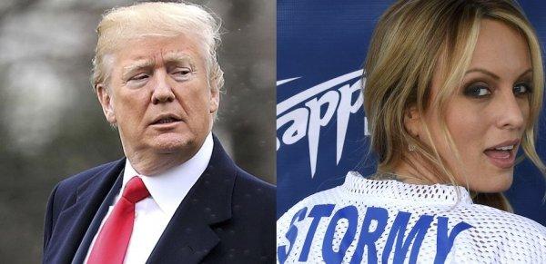 Порноактриса рассказала о семейной фотографии, показанной Трампом перед сексом