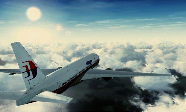 Потерянный рейс MH370 мог сесть на секретной базе перед падением – пилот