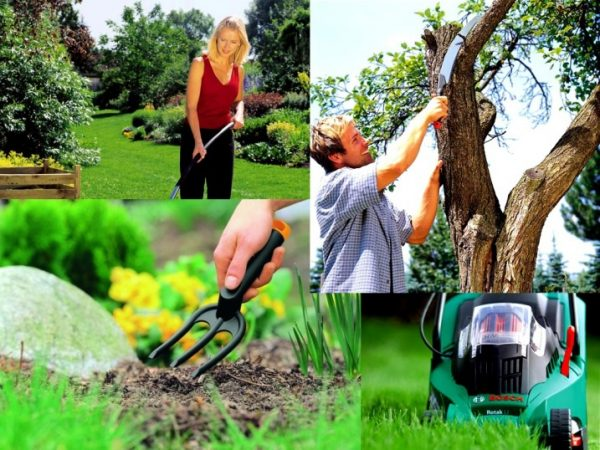 Большой выбор качественного инструмента и техники для сада и дома