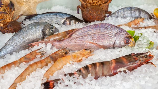 Свежемороженная рыба с доставкой по Москве