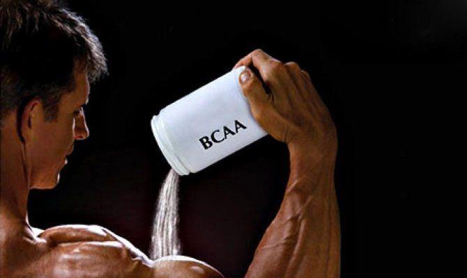 Действие аминокислот BCAA на организм человека